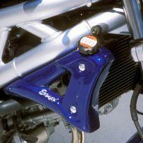 Ecopes de radiateur Brut Ermax SV650N (1999-2002)