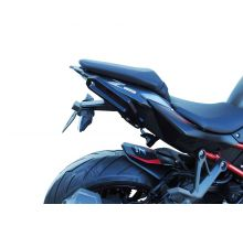 Poignées passager arrière S2 Concept Z H2