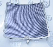 Protection de radiateur titane R&G ZX-10R (16-19)